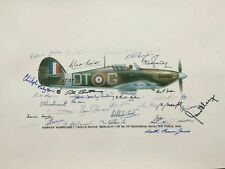 More details for battle of britain royal air force 1940 signed pilot print 34 pilots and artist