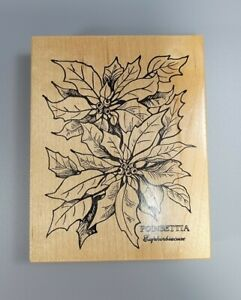 POINSETTIA Rubber Stamp Floral Holiday Season PSX K-784