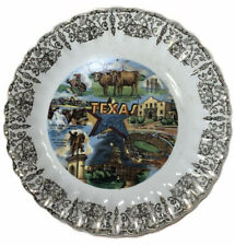 Vintage Texas The Lone Star Souvenir Plate Decorative Wall Long Horns The Alamo