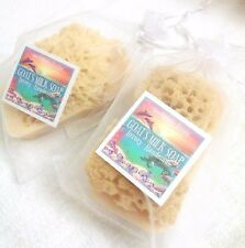 Sea Sponge in a Goat's Milk Soap Gifts For those who have it all     Lavender