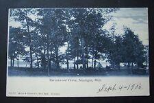 RAVENSWOOD GROVE, Montague, Michigan vintage postcard, 1906