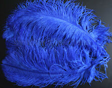 """1 pc of 18-20"""" Male Royal Blue Ostrich Drab Plume Feather for Wedding, Millinery"""