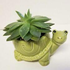 Ceramic Tillie Turtle Tortoise Animal planter 2.50� x 4.25�