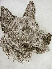 Geoffrey Lasko - Australian Cattle Dog - Listed Artist Etching -S&N - Free Ship