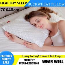 new stock Special Buckwheat pillow 70cmX40cm health sleep cotton white pillow