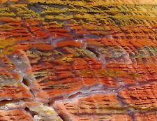 Mw: HOWARDITE Jasper-Agate -Nevada-  Rough Slab