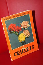 MES DAHLIAS (mes amies les fleurs)