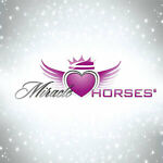 Miracle*Horses Reitsport