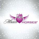 Miracle*Horses Reitsport