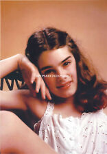 ACTRESS BROOKE SHIELDS 8 X 10 COLOR PHOTO A-BS9