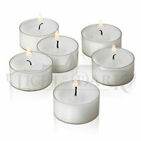 Set Of 50 Unscented White Tealight Candles In Clear Cups