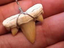 Taxidermy Dinosaur Shark Tooth Extinct Whale Skull Fossil Unusual Unisex Pendant