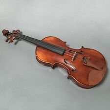 Sky FL001-JB-O400 Hand Made Professional 4/4 Full Size Violin Jujube Wood Fitted