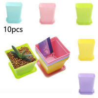 Plastic 10pcs Mini Flower Pots - Succulent Plant Planters Garden Home Decor