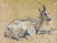 PAINTING SKETCH ANIMAL PORTRAIT GAINSBOROUGH GOAT POSTER ART PRINT BB12942B
