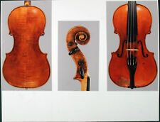 A rare, fine certified violin by Mathias Albani, 1675