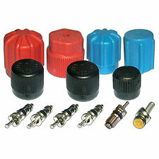 AC System Valve Core and Cap Kit - 612903, 26777, 26784, 1311567, 801799, MT2903