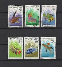 poissons d'aquarium Hongrie 1987 une série de 6 timbres / T1649