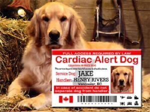 Canadian Service Dog ID Card, Cardiac Alert Service Dog Wallet Card, SD Card