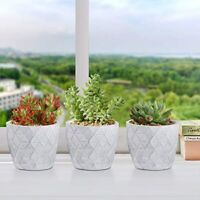 Cement Succulent Pots 4 Inch Curved Surface Set of 3, Small Concrete Grey
