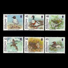 Alderney 2011 - Birds Animals Nature Fauna Beach - Sc408a MNH