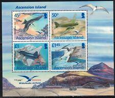 Ascension SC1096 Aviation &Birds MNH 2002