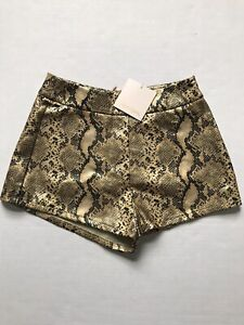 Showpo Sz 4 Gold Snake Print Faux Leather Candy Paint Shorts NWT