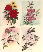 Lot of 4 Botanical Florals by Reina Lily Roses Apple Blossoms Offset Lithos S754
