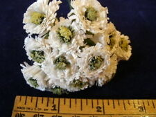 Petite Millinery Flower Lot of12 Mini Mum Y53 White