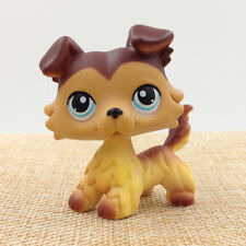 LPS Collie Dog Littlest Pet Shop Yellow Brown Hair Blue Eyes Puppy Kid Girl Gift