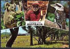 1968 13c Avocet Bird Scarce Usage Australia Postcard to Germany Telephone Slogan