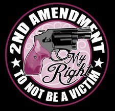 HOMELAND SECURITY 2ND AMENDMENT LADIES NRA GUN PATCH