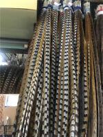 Wholesale 10 / 50pcs high quality natural rare pheasant tail feathers 30-170 cm