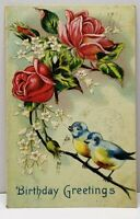 Birthday  Greetings Embossed Roses and Pretty Bluebirds 1910 Vermont Postcard G4