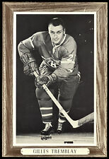 1964-1967 BEEHIVE GROUP 3 GILLES TREMBLAY EX-NM MONTREAL CANADIENS HOCKEY PHOTO