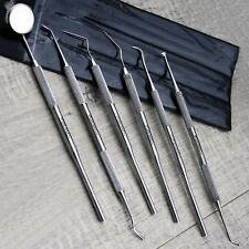 6 Piece Pro Dental Tools Set | Surgical Stainless Steel Dentist Repair Kit