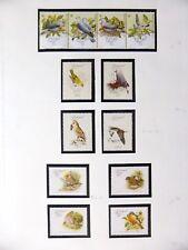 Portugal oiseaux sur 3 pages U/M NB3605