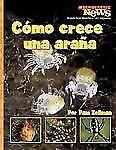 Como Crece una Arana = A Spiderling Grows Up (Scholastic News Nonficti-ExLibrary