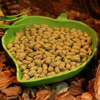 Reptile Feeding Food Water Dish Pet Tortoise Gecko Resin New Pro