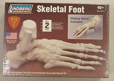 Lindberg 1/1 Life Size Foot Skeleton Anatomy Science Project Model Kit New