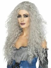 Banshee Grey Long Messy Witch Haloween Wig Adult Womens Fancy Dress Costume