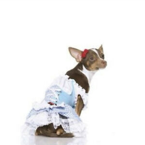 Dorothy Wizard of Oz Halloween Pet Dog Party 2 PC Costume Dress Size M