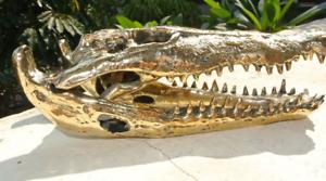 "Small Crocodile solid brass aged heavy skull head 23 cm hand made statue 9"" B"