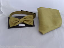 < GG > Gold Polyester Pre-tied Bow tie and Hankie Set>many colours R available