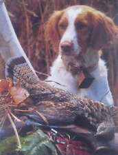 """Hunting Dog with dead Grouse 11 """" x 14"""""""