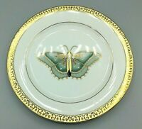 Set of 4 Vintage Gold Buffet Royal Gallery Butterfly Dessert Plates