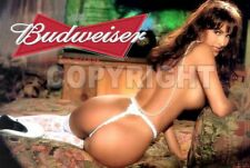 Fridge Magnet Sexy Budweiser sexy playmate white thong pin-up girl art