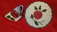 APPLE TRIO Blue Ridge Southern Pottery Hand Painted Vintage Cup & Saucer Set C&S