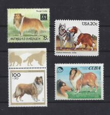 Dog Postage Stamp Collection Art Body Studies Rough Coated Collie 4 x Mnh