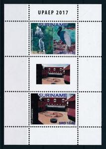 [SU2296] Suriname 2017 Tourism bird parrot UPAEP Souvenir Sheet MNH